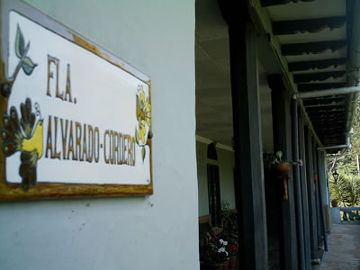 Quinta Alvarado-Cordero
